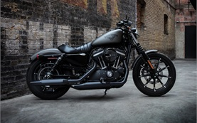 Harley Davidson Sportster Iron 883 - rent a motorbike in Split