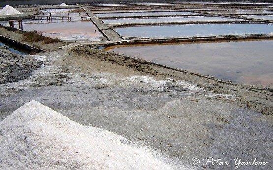 Aheloy - salt cellar