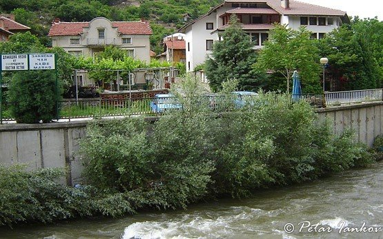 река Бачково