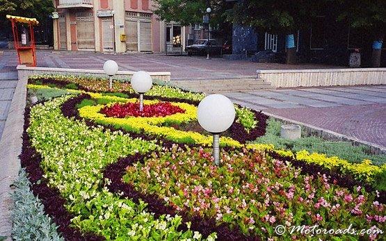 Flowers, Velingrad