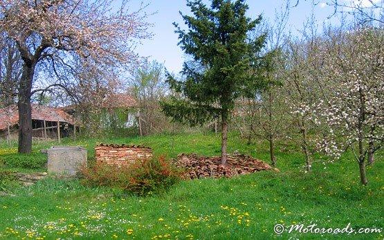 Garden, Town of Elena