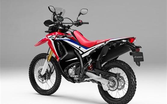 Honda CRF 250 - motocicletas para alquilar en Marruecos