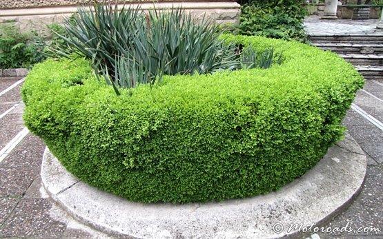 Kyustendil - landscaping