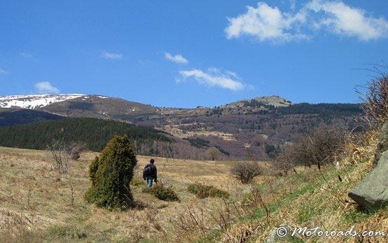Панорама горы Витоша