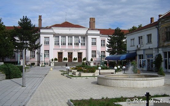 Школа - Видин