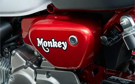 Honda Monkey 125cc - мотор под наем в Малага, Испания