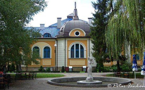 Sky House, Vidin