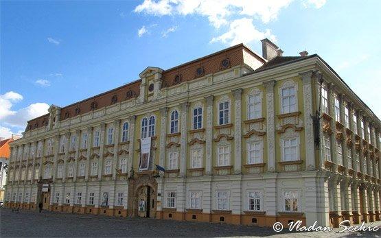 Timisoara's Center