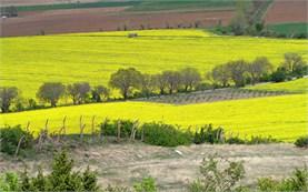 Колоездене в България