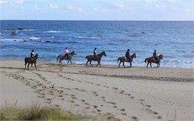 Черноморский тур - Катание на лошадях