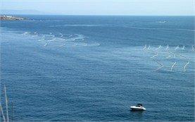 Черно море - България