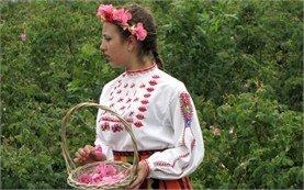 Момиче в поле от рози, Казанлък