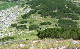 Guided hiking tours in Bulgaria