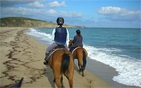 Катание на лошадях - Черное море