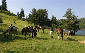 Horseback riding in Rhodope mountains