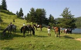Катание на лошадях в горах Родопы