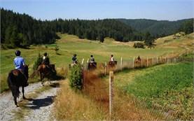 Катание на лошадях в горах