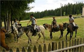 Катание на лошадях в горе Родопы
