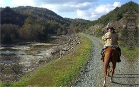 Horseback riding - people on tours