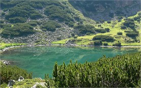 Lake - Rila mountain