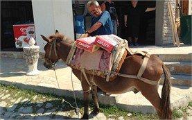 Local taxi - Berat, Albania
