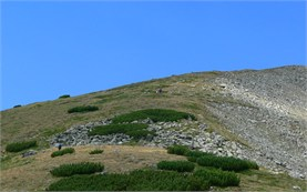 Musala hiking trip
