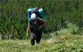 People on  trekking tours