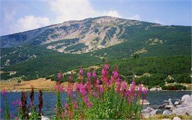 Pirin mountain - Lake Bezbog